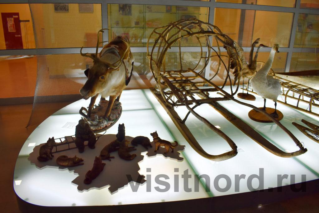 олень в музее