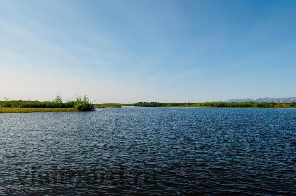Устье реки Осиновая