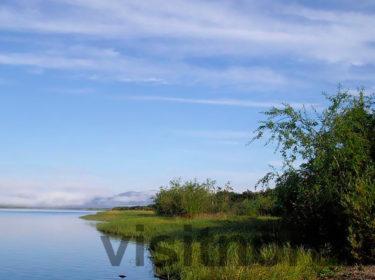 Низовья реки Великой