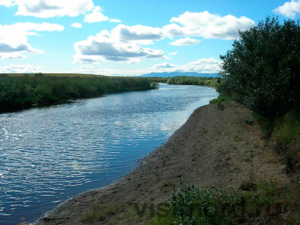 Река Кедровая