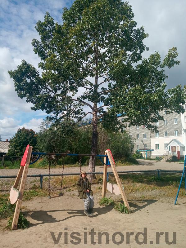 Детская площадка в Марково