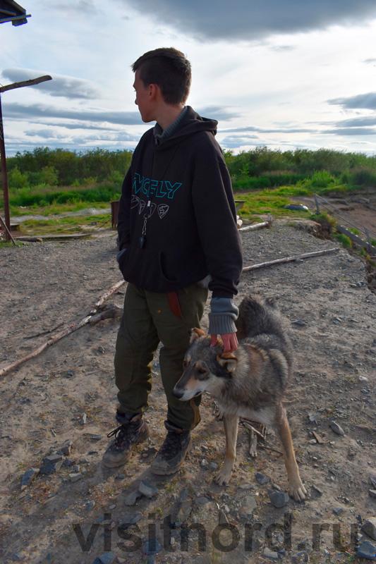 С собакой на Ярах