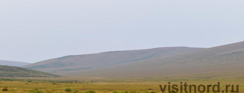 Вид с пригорка Снежное