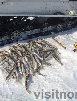 Зимнее Большое Приветствие Чукотки – подледная рыбалка